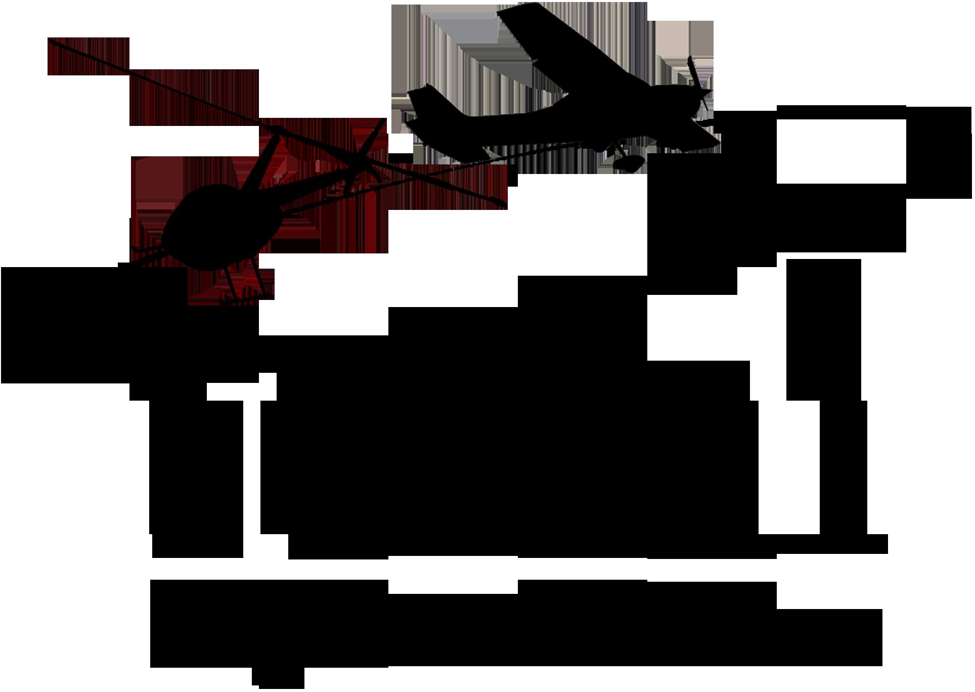 Total Flight Solutions  Logo